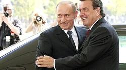 Żaden kanclerz nie upadł tak nisko - do kolan cara Putina - miniaturka