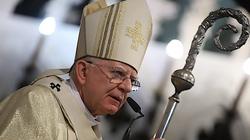 Abp Marek Jędraszewski: Wiara w Miłosierdzie zmienia naszą teraźniejszość - miniaturka