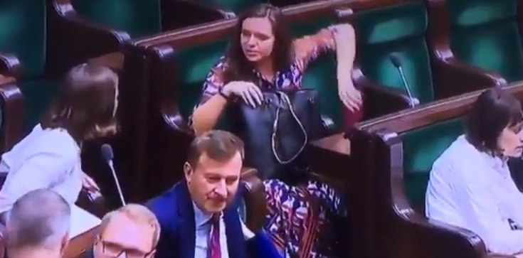 Co Jachira chowa w Sejmie? Mocny komentarz Pawłowicz - zdjęcie