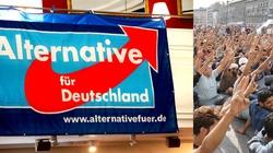 Niemcy nie chcą imigrantów - kolejny rekord AfD - miniaturka