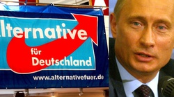 Niemcy: antyimigrancka i prorosyjska AfD padła ofiarą trollingu przedwyborczego - miniaturka