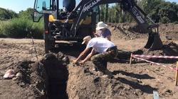 W Odessie znaleziono masowe groby ofiar NKWD - miniaturka