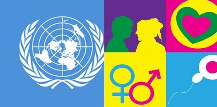 """Skandal! Próba przemycenia nieograniczonej liczby """"płci"""" w projekcie ONZ o ściganiu zbrodni przeciwko ludzkości - zdjęcie"""