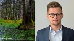 Aleksander Brzózka, rzecznik MŚ dla Frondy: Polska przyroda jest unikatem w Europie - miniaturka