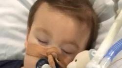 Sąd: Mały Alfie Evans zostanie odłączony od aparatury - miniaturka