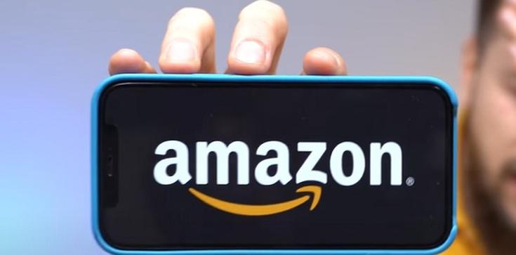 Ani centa podatku CIT nie zapłacił Amazon w Europie - zdjęcie