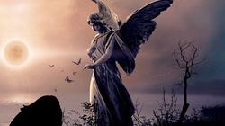 Oto trzy piękne modlitwy do... Anioła Stróża! - miniaturka