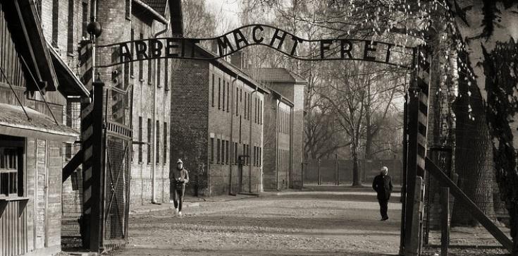 Artystka ukradła eksponaty z muzeum Auschwitz-Birkenau. Jest zawiadomienie do prokuratury - zdjęcie