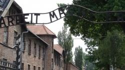 Ostry spór z Muzeum Auschwitz. Wkroczył Piotr Gliński - miniaturka