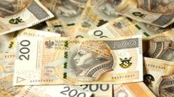 Duży wzrost zainteresowania numizmatyką. Ceny kolekcjonerskie przekraczają nominał nawet 70-krotnie! - miniaturka