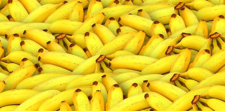 Banany to prawdziwa zdrowotna BOMBA! ZOBACZ - zdjęcie