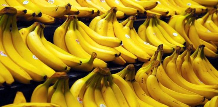 Oczyszczająca detoksykacja dietą bananową - sprawdź ją - zdjęcie