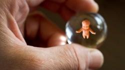 Belgia dąży do kryminalizacji pro-life - miniaturka