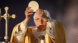 Benedykt XVI: Kościół musi się wciąż nawracać - miniaturka