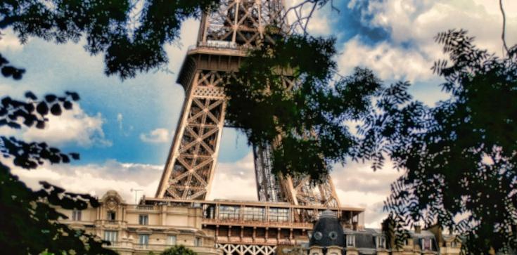 Kontrowersyjna ustawa antyterrorystyczna we Francji przedłużona do 2021 roku - zdjęcie