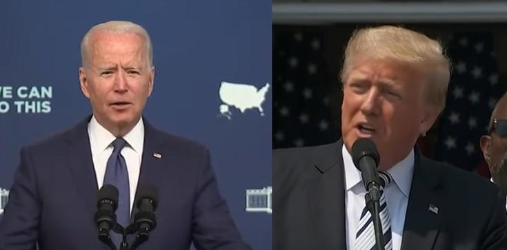 Większość Amerykanów uważa, że wybory prezydenckie w roku 2020 zostały sfałszowane - zdjęcie
