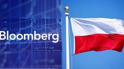 Bloomberg: Polska Midasem gospodarczym Europy - miniaturka