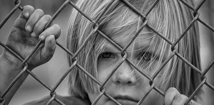 Dzieci ofiarami seks 'edukacji' w przedszkolach i szkołach - zdjęcie