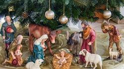 Papież: choinka i żłóbek są ,,ikonami'' Bożego Narodzenia - miniaturka