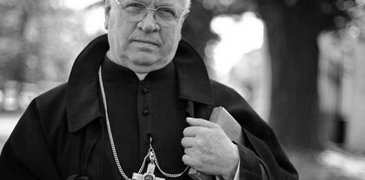 Zmarł po długotrwałej chorobie ks. biskup Józef Zawitkowski - zdjęcie