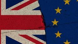 Brexit - koszmar dla Brytyjczyków.  W Parlamencie Europejskim pełna satysfakcja - miniaturka