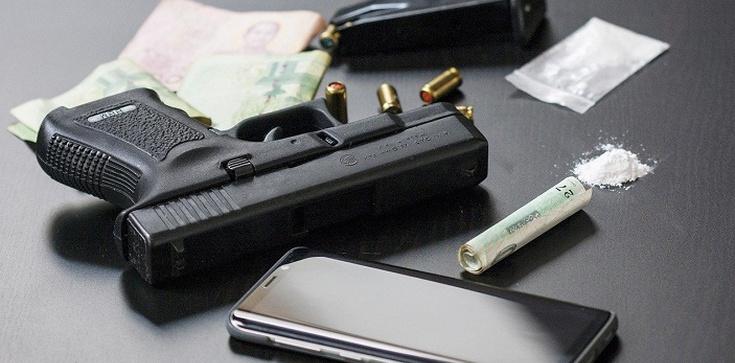 Kryminalni udaremnili wprowadzenie na rynek kokainy za ćwierć miliona złotych - zdjęcie