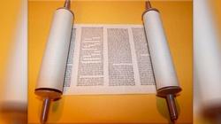 List Apostolski o św. Hieronimie, omówienie - miniaturka