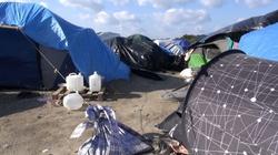 """Ohydny gwałt imigrantów na tłumaczce w Calais! """"Dżungla"""" zostanie zlikwidowana. - miniaturka"""