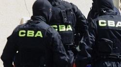 CBA - wizytówka PiS. Walka z korupcją oczyszcza Polskę - miniaturka