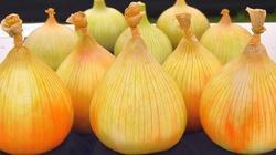 CUDOWNE właściwości zwykłej cebuli - miniaturka