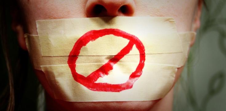 ACTA 2: ,,Fakt'' i ,,Wyborcza'' nie widzą problemu! - zdjęcie