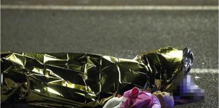 Matka Kurka: W strefie Schengen europejska ciężarówka potrąciła kilkudziesięciu Europejczyków - zdjęcie