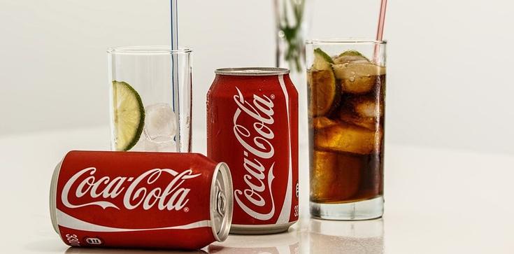 Jan Bodakowski: Bojkotuj Coca-Colę. Chroń swoje zdrowie. Sprzeciwiaj się homopropagandzie - zdjęcie