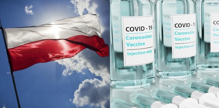 Brawo Polska. ''Chcemy stworzyć szczepionkę w Polsce i uzyskać niezależność na przyszłość'' - zdjęcie