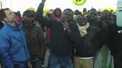 Schäuble: Migranci uchronią Niemcy przed kazirodztwem - miniaturka