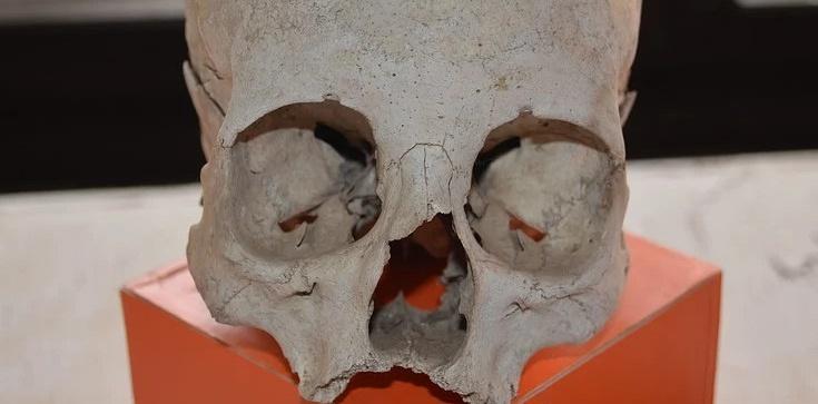 Wrocław: Remontowali tory, znaleźli trumny i ludzkie szczątki - zdjęcie