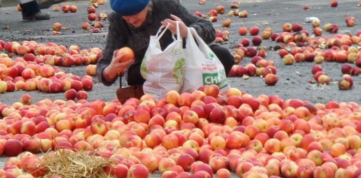 Mocne zdjęcie po proteście rolników! - zdjęcie