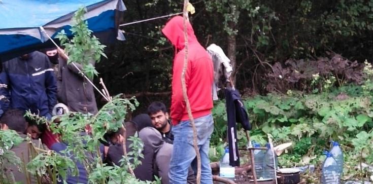 Ciepłe posiłki, papierosy i słodycze… Służby wymieniły imigrantów na granicy  - zdjęcie