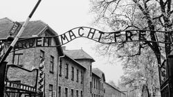 Nie wolno zabijać! Wiedziała to położna z Auschwitz  - miniaturka