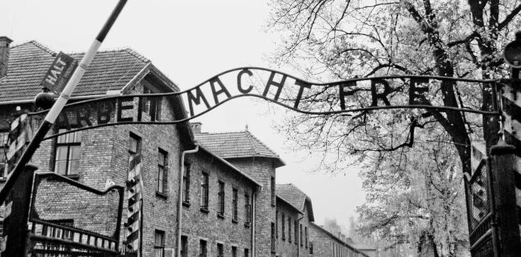 Nie wolno zabijać! Wiedziała to położna z Auschwitz  - zdjęcie
