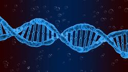 Genetyczna swatka. Opracowano aplikację randkową, która porównuje DNA - miniaturka