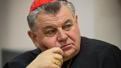 Prymas Czech: Abp Jędraszewski ma rację, ideologia LGBT jest jak zaraza - miniaturka
