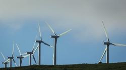 Polska walka z wiatrakami. Turbiny wiatrowe stają się problemem  - miniaturka