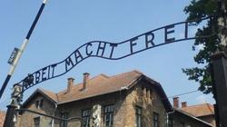 II wojna światowa się skończyła? ,,Berliner Zeitung'': Polacy do dziś zmagają się ze skutkami niemieckich zbrodni  - miniaturka