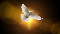 DZIŚ rozpoczyna się Nowenna do Ducha Świętego - miniaturka
