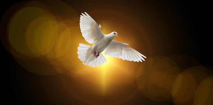 ,,Nigdy nie ustawajmy w wołaniu i błaganiu Ducha!'' - zdjęcie