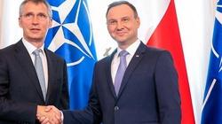 Marek Budzisz: Gwarancje NATO - żelazne czy papierowe? - miniaturka