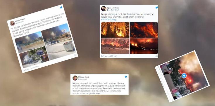 Apokaliptyczne obrazy w Turcji. Lasy stanęły w płomieniach, turyści uciekają z kurortów  - zdjęcie