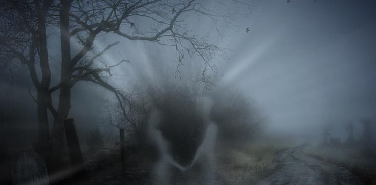 Droga duszy po śmierci. Wizja duchowa o. Serafina Rose - zdjęcie
