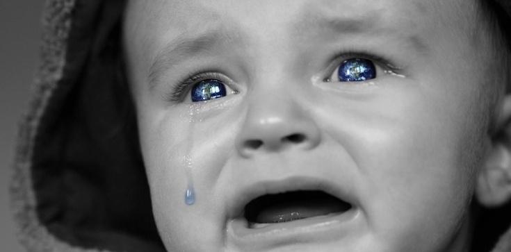 Kilkadziesiąt dzieci urodzonych przez surogatki oczekuje na odebranie w kijowskim hotelu - zdjęcie